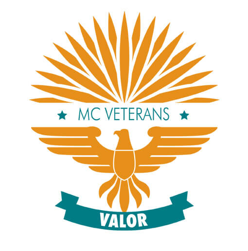 VALOR veterans logo